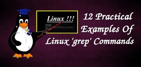 12 Practical Examples of Linux grep Command