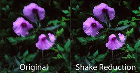 Photoshop CC: Hands on with camera Shake Reduction, and